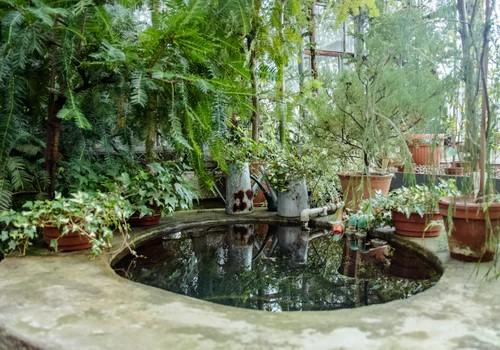 small indoor pond