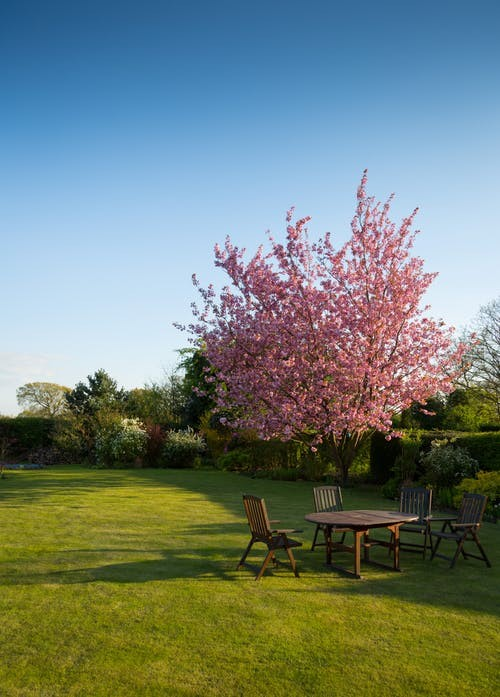 wooden table and chairs on large garden lawn